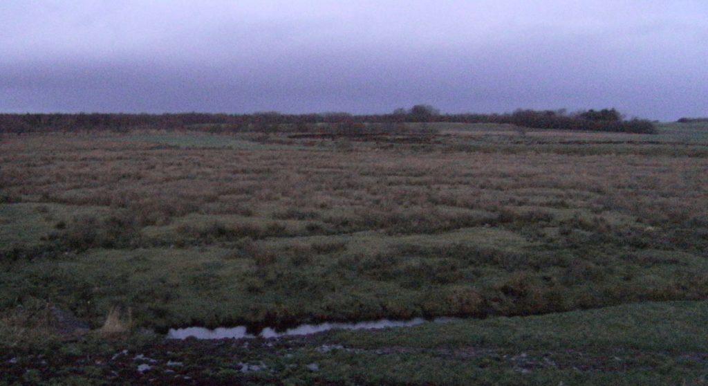 Borremose, ein Moor in Nordjütland.